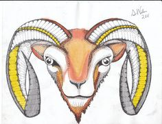 how to draw a mountain goat