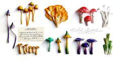 Polmer clay Fairy Mushrooms - Nichola Battilana