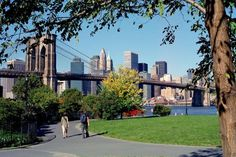 Brooklyn is no longer up and coming; it's arrived. Buzzing with pioneering artisans, it is a dynamic hub of culinary innovation (Smorgasburg) and cutting-edge culture