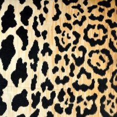 ODL Shell Trellis Spa by P Kaufmann Fabric - 100% FABRIC CAROLINA: Polyester - - - 54 inches - Fabric Carolina - P Kaufmann