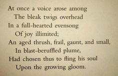 an overview of the sadness and depression in the poem the darkling thrush by thomas hardy - an examination of thomas hardy's the darkling thrush the darkling thrush is a poem occasioned by the beginning of a new year and a new century it is formally precise, comprised of four octaves with each stanza containing two quatrains in hymn measure.