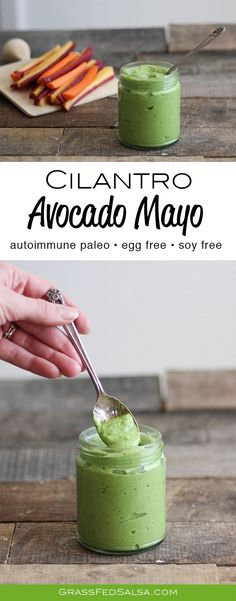 Get the recipe for this egg free, AIP & vegan friendly Cilantro Avocado Mayo.