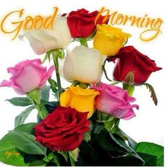 Good Morning sister and all, have a happy Tuesday, God bless♥★♥.