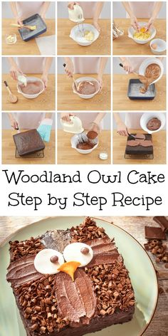 Owl cake recipe and decoration idea. This is a really easy way to make an owl birthday cake using a basic chocolate sponge recipe in a square tin and adding a few simple decorations. The end result is so cute