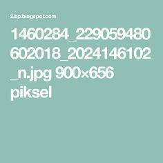 1460284_229059480602018_2024146102_n.jpg 900×656 piksel