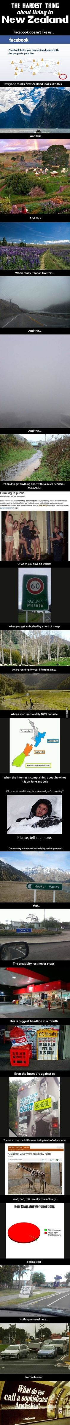 A look at New Zealand. Whenever something is said or posted about NZ I get a little excited and proud. ;)