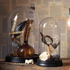 Curiosity Shop Set of 2 Glass Domes - Two's Company | domino.com