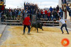 torodigital: El toro de Victorino Martin hiere a un vecino de ...