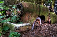 Abandoned Ardennes Forest cars, Ardennes Forest, Chatillon, Belgium
