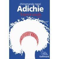 Americanah - broché - Chimamanda Ngozi Adichie, Anne Damour - Livre ou ebook - Fnac.com