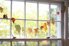 Waxed Autumn leaves....a simple project to let us enjoy the beautiful shapes and colors of Fall just a bit longer.  And kids would have fun collecting and dipping too (with supervision....that wax is HOT!).