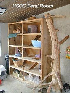 Cat tree (for the barn cats? Feral Cat House, Feral Cat Shelter, Feral Cats, Cat Shelters, Kitty House, Cat Climber, Cat Hotel, Cat Perch, Cat Enclosure