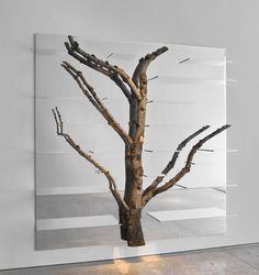 Unusual take on bookshelves! Andrea Branzi's Shelving That  Incorporates Real Birch Trees. #wood #decor #bookshelves
