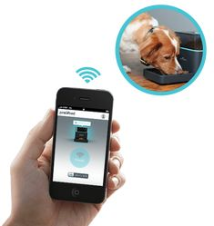 Pintofeed - Feed your pet from your iPhone. #apple #iphone #ipod
