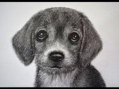 ▶ CÓMO DIBUJAR UN PERRO - PELAJE DE ANIMAL/HOW TO DRAW A DOG - YouTube