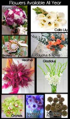 Wedding Flowers for Your Season