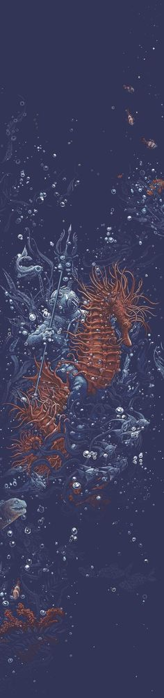 Under the sea on Behance