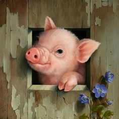 Cute Little Piggy Wiggy Farm Animals, Animals And Pets, Cute Animals, This Little Piggy, Little Pigs, Animal Paintings, Animal Drawings, Pig Drawing, Pig Art