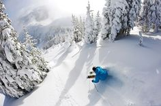 Tyler Ceccanti skiing the K2 Hellbents at Crystal Mountain. Amazing overhead shot. Alpine Skiing, Snow Skiing, Ski Ski, Ski Nieve, Crystal Mountain, Best Skis, Vail Colorado, Skiing Colorado, Ski And Snowboard