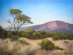 Landscape from Entabeni Game Reserve by Olli Malmivaara,  Soft pastel painting on sanded paper 50 x 65 cm