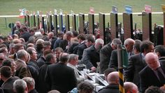 Get The Best Odds On Every Runner In The Grand National Horse Racing Tips, Racing News, Grand National, Horses, Horse