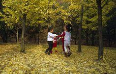 어느 가을날 은행나무 아래 아이들의 모습