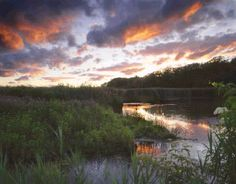 Mentor Marsh Nature Center is an interpretive nature preserve and part of the largest coastal Lake Erie marsh in northeastern Ohio!