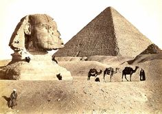 Shop Sphinx & Pyramids, Giza, Vintage Century Art Postcard created by Stark_Raving_Realist. Personalize it with photos & text or purchase as is! Sphynx, History Photos, Art History, Vintage Pictures, Vintage Images, Retro Vintage, Le Sphinx, Sphinx Egypt, Ancient Egypt History