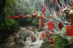Nature and china