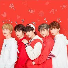 K Pop, Fandom, Mode Rose, The Dream, March 4, Kpop Boy, Kpop Groups, Bts Wallpaper, K Idols