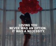 Loving You Never Was An Option. It Was A Necessity