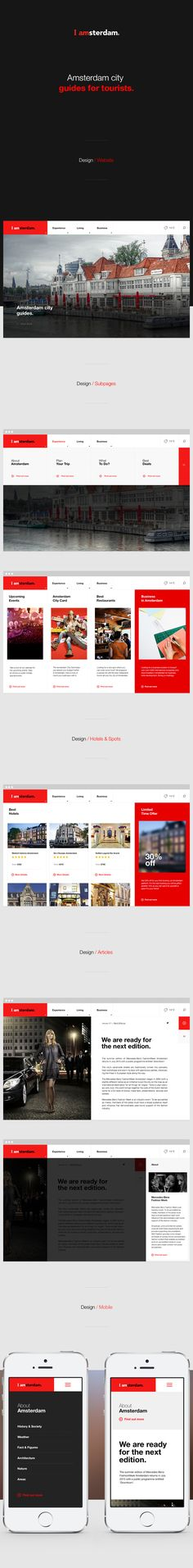 I was tasked to prepare the pitch for the portal about everything you need to visit, enjoy, live, work, invest and do business in the Amsterdam Metropolitan Area.