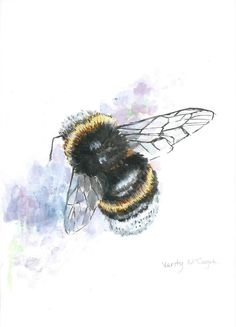A5 Bumble Bee Illustration PRINT by LittleIllustrations on Etsy, £15.00