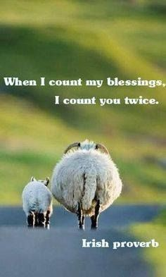 When I count my Blessing I count you twice.   Happy St Patrick's Day #Irish Proverb