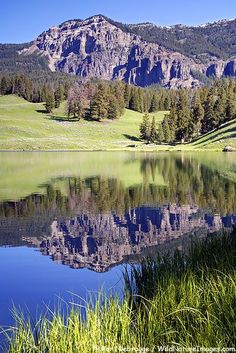 Trout Lake, Yellowstone National Park, Wyoming.