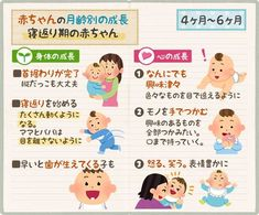 赤ちゃんの成長 生後4ヶ月・5ヶ月・6ヶ月は首も据わり動き出す Chibi, Baby Care Tips, Raising Kids, Childcare, Health Fitness, Family Guy, Parenting, Study, Trivia