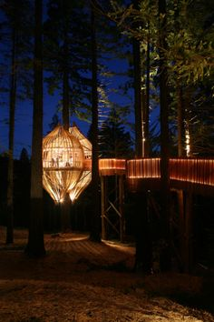 Yellow Treehouse Restaurant in Auckland, New Zealand