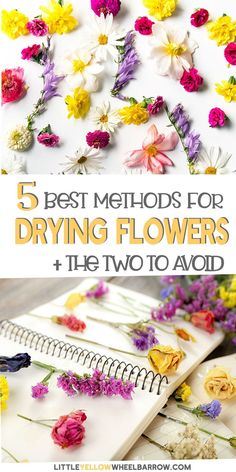 The Best Methods To Dry Your Summer Flowers! We tested all the flower drying methods and came up wit Dried And Pressed Flowers, Pressed Flower Art, Dried Flowers, Paper Flowers, How To Dry Out Flowers, How To Preserve Flowers, Preserving Flowers, Diy Crafts For Kids, Easy Crafts
