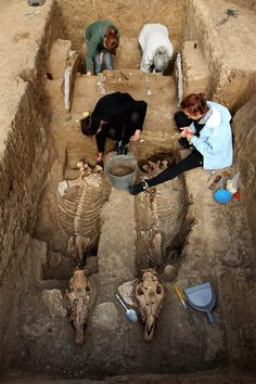 Another view of the recent discovery of a 2,500-year-old Thracian tomb with an intact chariot and the remains of two horses buried in an upright position. Link to complete article:  http://www.archaeology.org/news/1336-130927-bulgaria-thracian-horses-chariot