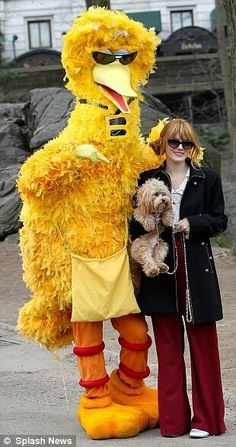 Bella Thorne - Hi Big Bird! You are THE bomb diggity!