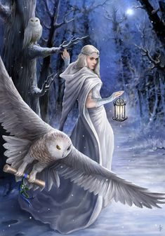 Midnight Messenger by Anne Stokes
