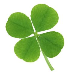 25 Literary Quotes About Luck...JUST IN TIME FOR MY st. patrick's day BIRTHDAY