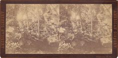 Stereoview Card Manchester NH | eBay