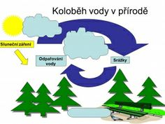 Koloběh vody v přírodě Weather For Kids, Elementary Science, Earth Day, Seasons, Education, School, Nature, Notes, Meteorology