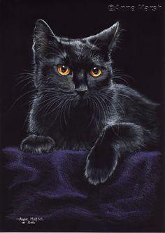 Amazing Looking Black Halloween Cat.
