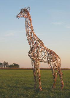 Life-size giraffe scupture