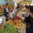 20 mejoras sociales y medioambientales que conlleva el consumo ecológico y local