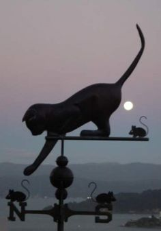 The Cat Playing with Mice Weather Vane is handcrafted of copper and brass with optional gold leafing. Metals & design can be customized upon ordering.