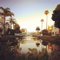 Venice Canals, Los Angeles  http://californiathroughmylens.com/venice-canals-near-venice-beach