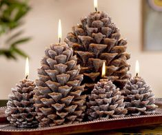 Pine Cone Candles Add some festive decor to your home this winter with these beautiful pine cone candles! They really set the ambiance in th...